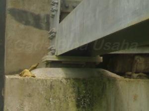 Rubber Bridge Pad